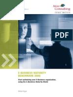 E-Business Maturity Benchmark 2008