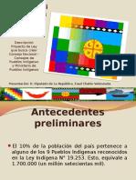 PRESENTACION DIPUTADO FUAD CHAHIN - Representatividad de los Pueblos Indígenas1