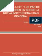 Institucionalidad Indigena.ppt
