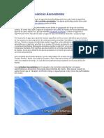 Corrientes Oceánicas Ascendentes