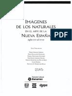 Imagenes de Los Naturales en El Arte de La Nueva España Siglos XVI al XVIII