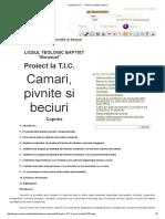 Proiect la T.I.C