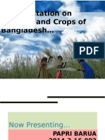 A Presentation on Seasons and Crops of Bangladesh.pptx