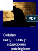 Celulas sanguineas. GB. Weebly. PG 15-16.ppt
