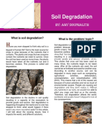 soil degradation  pdf