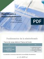 Electroforesis e Inmunoelectroforesis