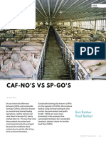 caf-nos vs sp-gos