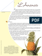 Fche Ananas