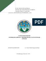 Plan de Investigacion Contabilidad Agricola y Rentabilidad Del Cultivo de Palma Africana Valentin Lopez