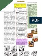 ALFA1-PLI2
