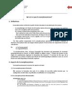Qu'Est-ce Que La Morphosyntaxe.pdf