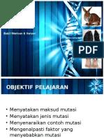 Mutasi Slide