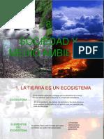 TEMA 8. Sociedad y medio ambiente. David, Diego Moya y Juan