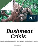 bushmeat article