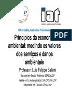 Princípios Da Economia Ambiental