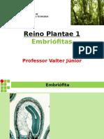 107539-Reino Plantae 1 - Introdução Ao Reino Vegetal (1)