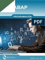 Brochure Sap Abap