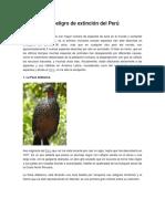 Animales en Peligro de Extinción Del Perú
