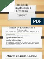 Indices De Rentabilidad Y Eficiencia.