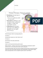 Perkembangan Sistem Neurologi