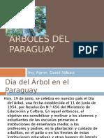Unidad II Arboles Del Paraguay