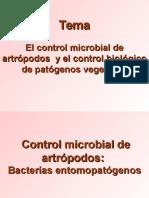 Control Microbial Artrópodos BACTERIAS ENTOMOPATÓGENAS