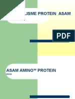 300112 - Protein Struktur Asam Amino