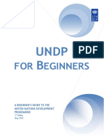 UNDP for Beginners En