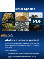 14-16yrs - Indicator Species - Classroom Presentation