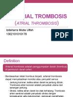 Atrial Thrombosis (Izdaharra Mutia U -178)