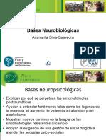 Bases Neurobiologicas