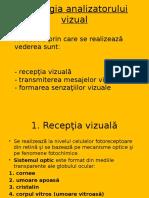 Fiziologia analizatorului vizual