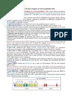 Immunologia Complesso Maggiore Di Istocompatibilita Mhc