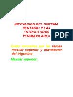 (Teoria) Inervacion Del Sistema Dentario y Las Estructuras p