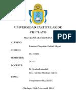 INFORME MAIS BFC.docx