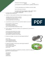 Prueba 2 Estructura Interna Célula