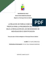 T-la Relación de Pareja Como Instancia Propicia Para La Progresión Del Sí Mismo Bajo La Regulación de Las Necesidades de Individuación e Identificación