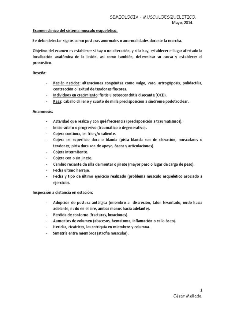Encantador Anatomía Y Fisiología Del Sistema Muscular Prueba Imagen ...