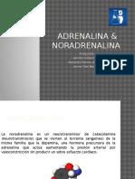 ADRENALINA-NORADRENALINA (1)