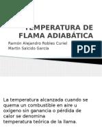 1.7 Temperatura de Flama Adiabática