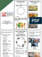 Leaflet- DIET Dm