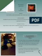 observation slideshow