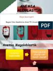 3.an.megaloblastik