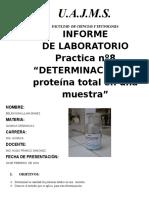 Informe Organica Ceanit (Proteinas)