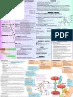 Endocrine Summary, Blood Clotting Summary