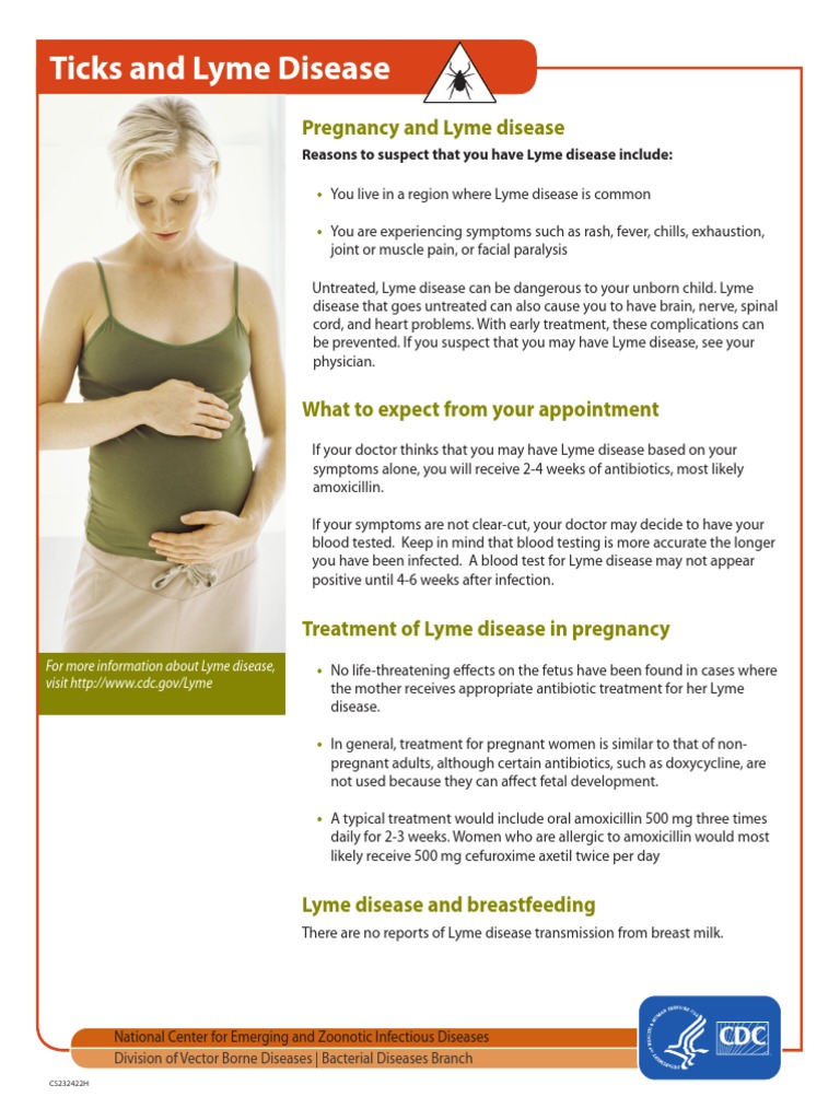 Lyme Disease And Pregnancy Factsheet Lyme Disease Infection