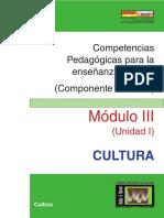 Guía III- Componente Docente 7