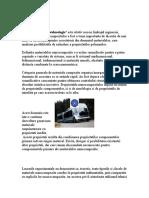 Nanomateriale compozite Nicolinco V..doc