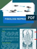 4.Fisiologi Dan Reproduksi