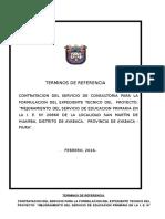 TDR EXP. COLEGIO San Martin Huamba